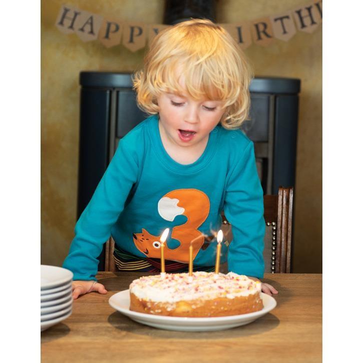 Frugi Magic Number T-Shirt 3-4J Tomermory Teal/Fox