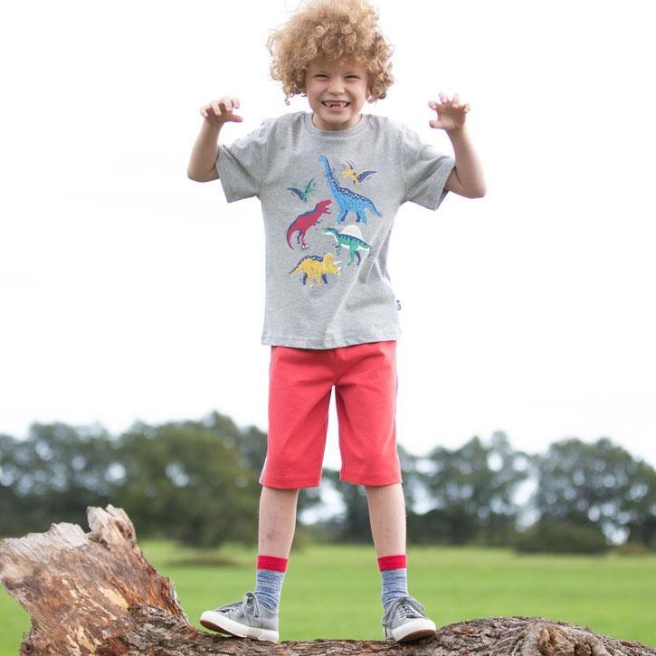 Kite Dinosaur Stomp T-Shirt 100% Bio-Baumwolle