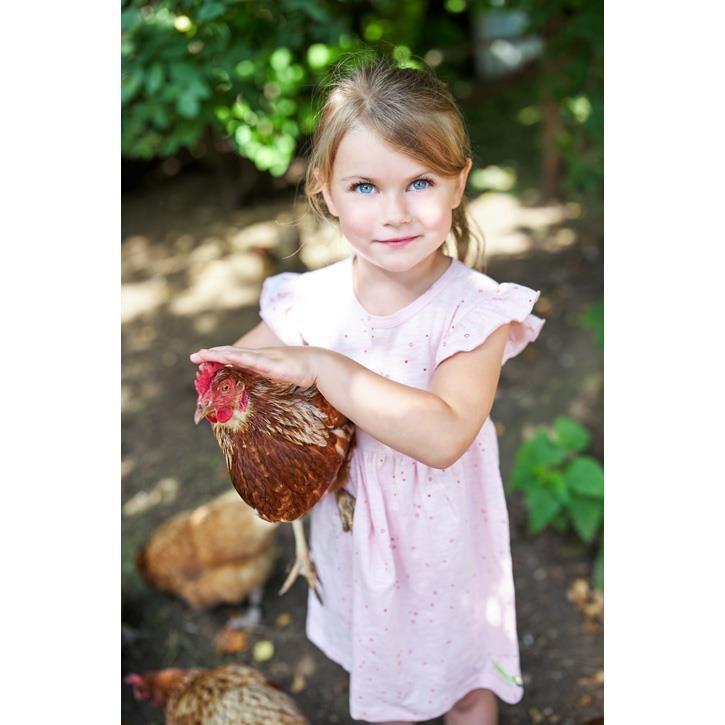 Loud+Proud Kleid Slub Jersey Bubbles Rosé 100% Baumwolle (kbA)